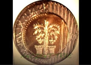Old money paying respect to the Palm Tree
